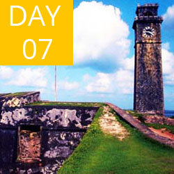 day07-galle