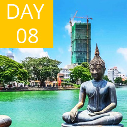 day08-colombo